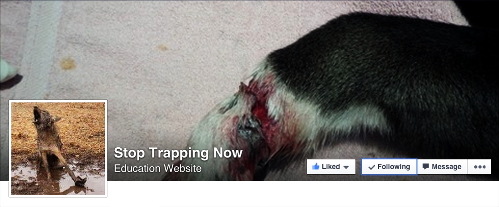 Stop-Trapping-Now